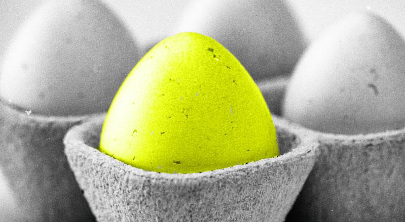 Golden Egg