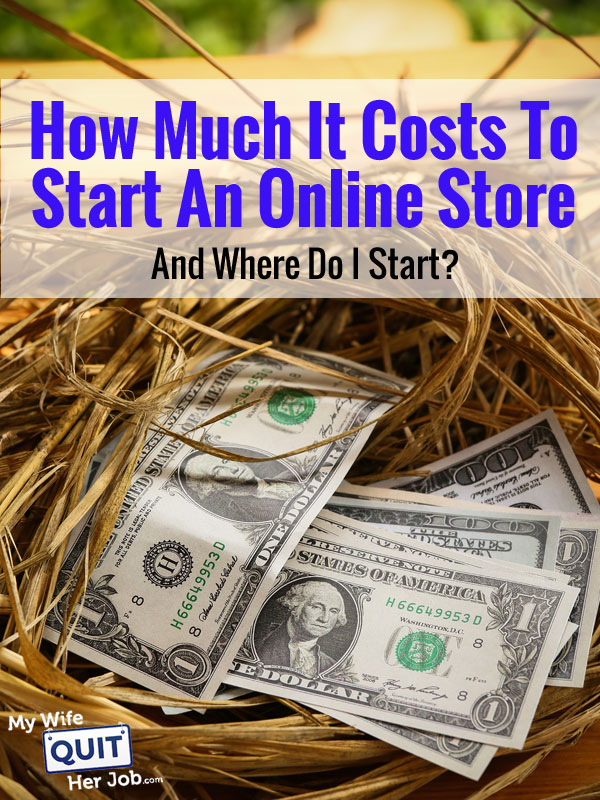How Much It Costs To Start An Online Store And Should I Dropship Or Carry Inventory