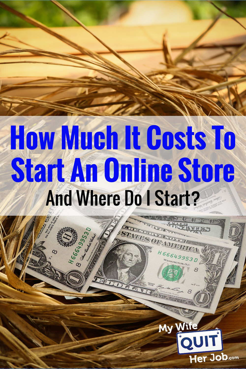 How Much It Costs To Start An Online And Should I Dropship Or Carry Inventory