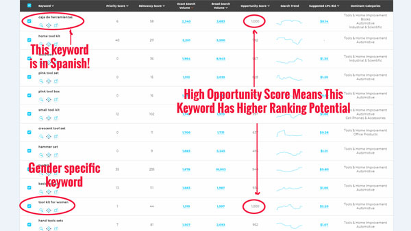 Viral Launch Keyword Research Example